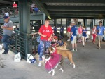 Bark at the Park _Rick Set 6_5_14004