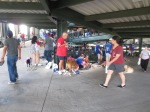 Bark at  the Park June 5 2014 001