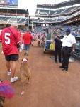 Bark at  the Park June 5 2014 018