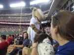 Bark at  the Park June 5 2014 055