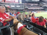 Bark at  the Park June 5 2014 073