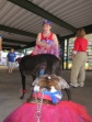 Bark at the Park 2015 009