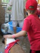 Bark at the Park 2015 035