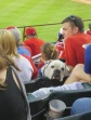 Bark at the Park 2015 052