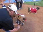Rex chosen for reporting at Texas Rangers Bark in thePark