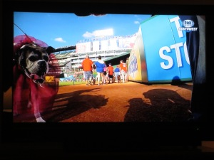 Rex' footage aired on Fox Sports Southwest