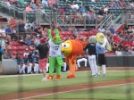 CarolinaMudCats and SalemRedSox 8_9_19 020